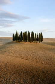 Classic Tuscan photo near Pienza
