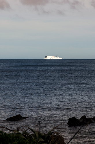 The ferry that runs between North and South Islands heading towards Wellington