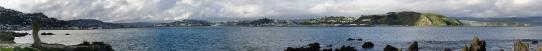 Lyall Bay Panorama