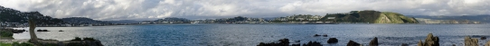 Lyall Bay Panorama