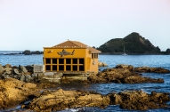 The Island Bay Bait House Aquarium