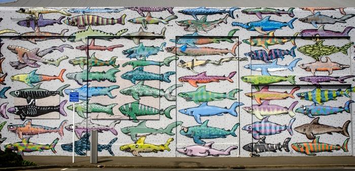 Image result for shark mural wellington