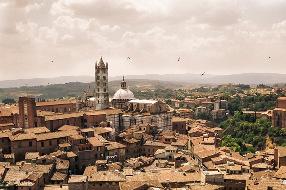 Siena from the Torre del Mangia