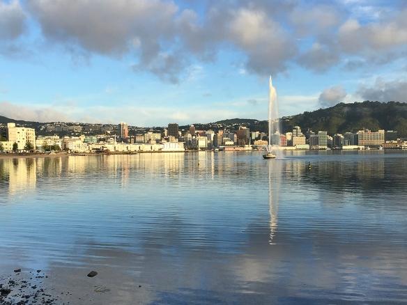 Wellington on a good day