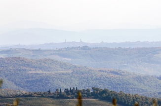 A Tuscan morning from our terrace